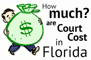 criminal fines florida